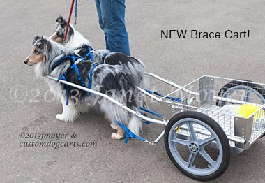 Carts & Harnesses<BR /> for Sale | CUSTOM DOG CARTS | Manufacturing