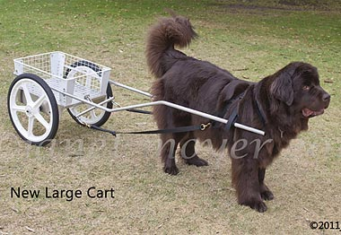 Newfoundland Dog Carts For Sale Uk